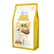 Корм Brit для кошек, для ухода за кожей и шерстью, лосось