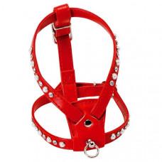 Lion Шлейка для собак со стразами, красная, AM-DC043/C