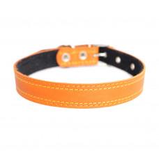 Lion Ошейник для собак, кожаный на подкладке без украшения, ширина, 25 см, S-505