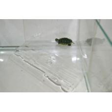 Плотик для черепах на стен акв угловой h21*16*20см