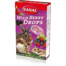 SANAL д/грызунов 45г Wild Berry Drops с лесн яг
