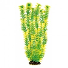 Растение DEZZIE 5610143 40см пластик блистер