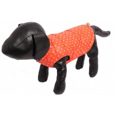 Жилет для собак оранжевый