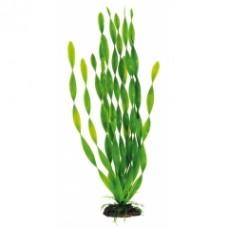 Растение DEZZIE 5610077 19см пластик блистер
