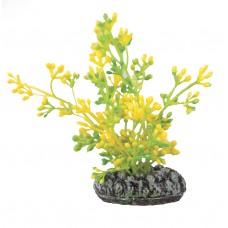 Растение DEZZIE 5610019 8см пластик блистер