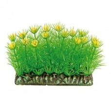 Растение DEZZIE 5610151 6см пластик блистер