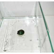 Плотик для черепах на стенку акв бол h12*19*21,5см