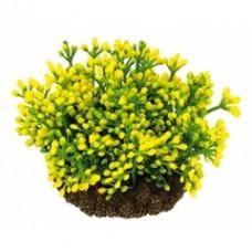 Растение DEZZIE 5610157 7см пластик блистер