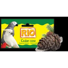 Рио Лакомство-игрушка Кедровая шишка
