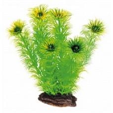 Растение DEZZIE 5610057 19см пластик блистер