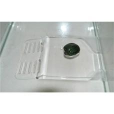Плотик для черепах на дно акв малый h 3*12*19см