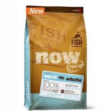 Корм Now Grain Free Fish Adult Recipe CF для взрослых кошек для чувствительного пищеварения, беззерновой, лосось/форель, на развес