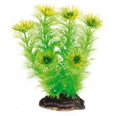 Растение DEZZIE 5610040 13см пластик блистер