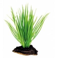 Растение DEZZIE 5610043 16см пластик блистер